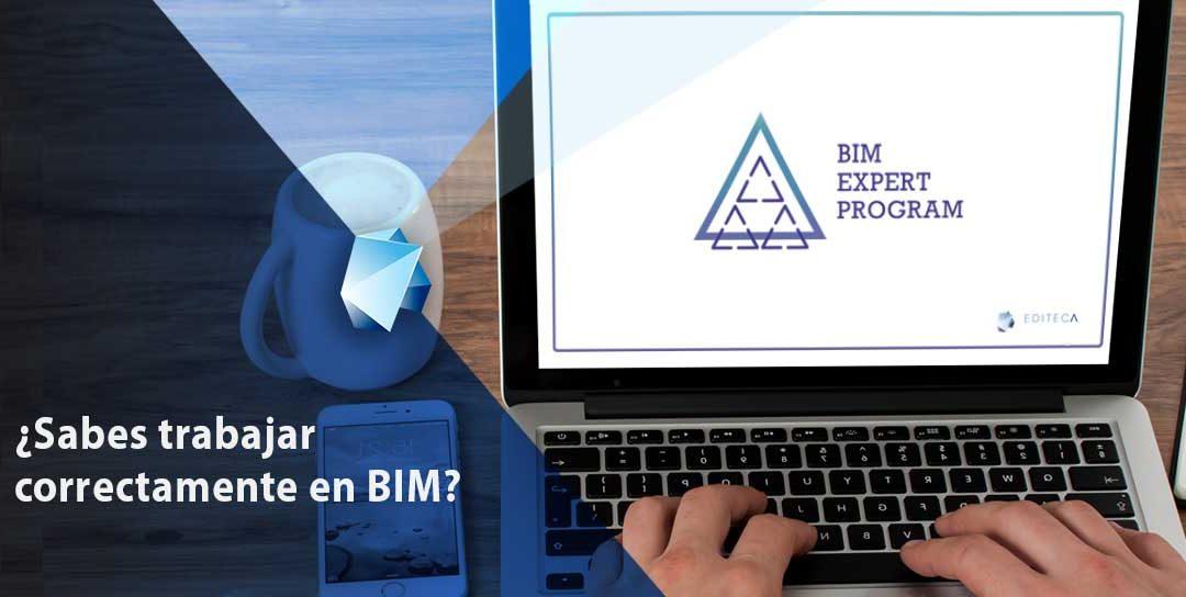 ¿Sabes trabajar correctamente en BIM?