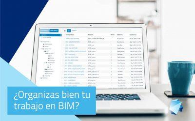 ¿Organizas bien tu trabajo en BIM?