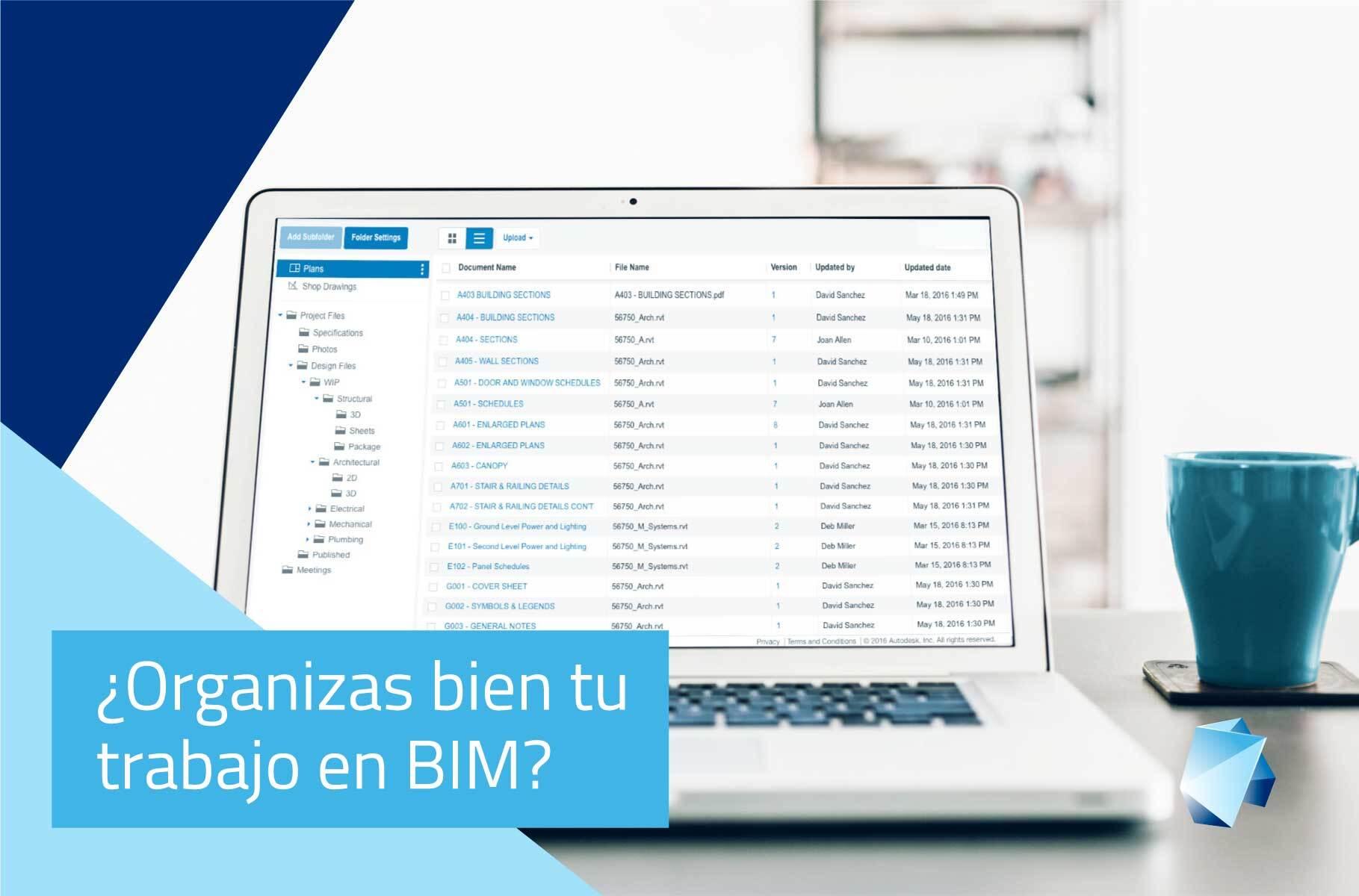 Organizar-trabajo-BIM