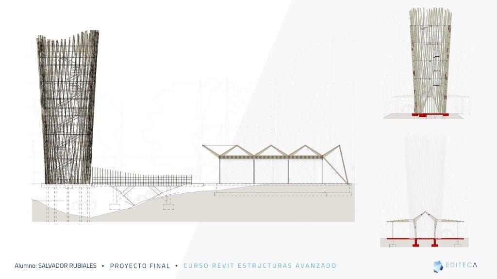 proyecto Revit Estructuras Avanzado - seccion