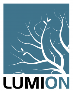 Lumion Software